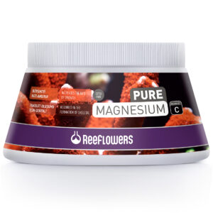 Magnesium – C
