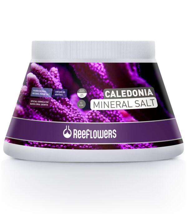 Reeflowers Caledonia Mineral Salt