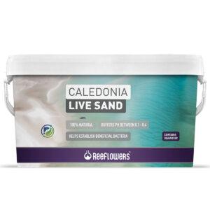 Caledonia Live Sand